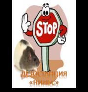 Борьба. Уничтожение крыс в Алматы и Алматинской области